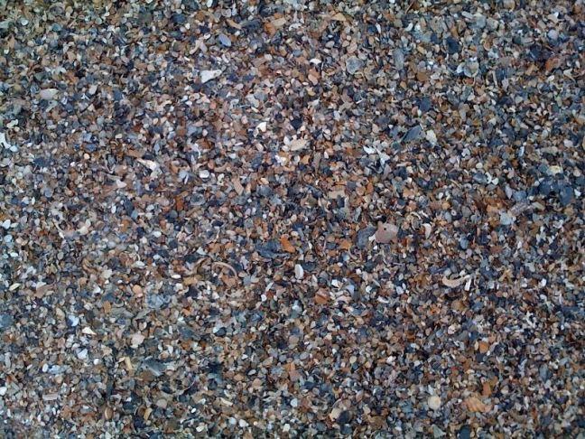 January 4 - On The Beach At Tybee Island.jpg