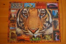 january-8-tiger-jigsaw