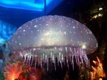 t-rex-jellyfish