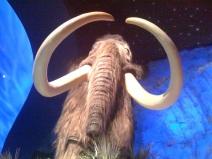 t-rex-mammoth
