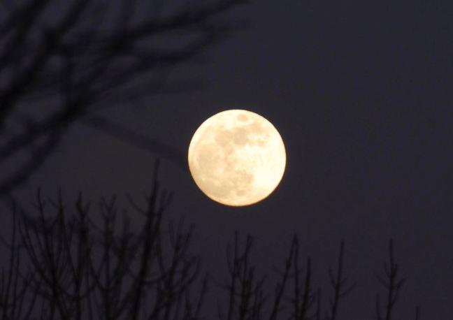 February 9 - Full Moon.jpg