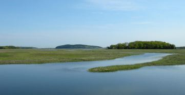 may-20-back-to-the-essex-river