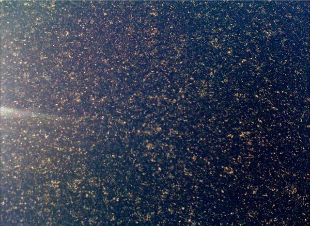 May 22 - Pollen.jpg