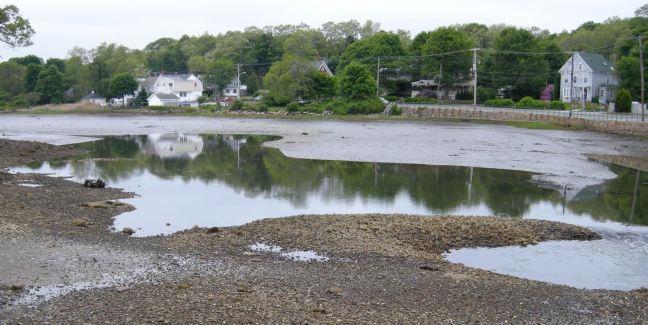 June 9 - Low Tide.jpg