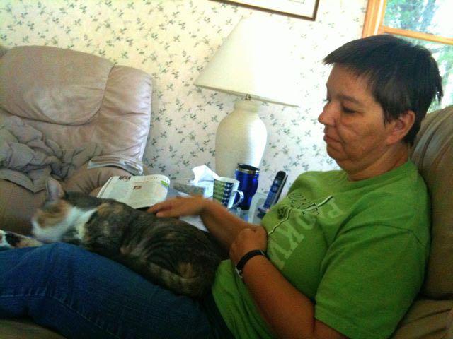 July 11 - Lap Cat.jpg
