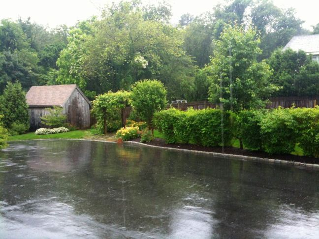 July 2 - Lots Of Rain.jpg