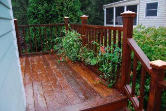august-29-i-dont-like-the-rain