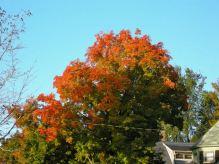 october-19-colors