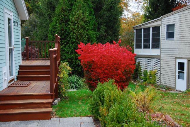 October 22 - Red!.jpg