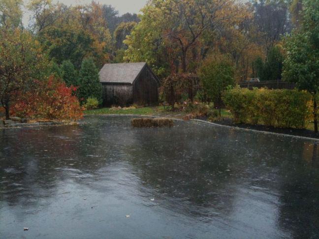 October 28 - Wet Wet Wet.jpg