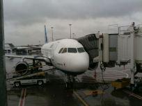 november-27-rain-plane
