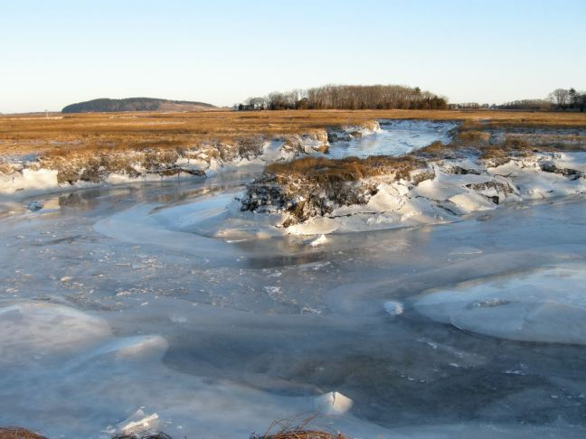 December 18 - Thicker River Ice.jpg