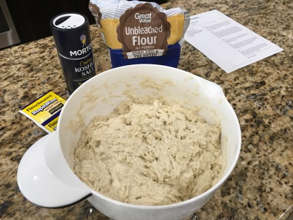 Flour, yeast, salt and water mixed